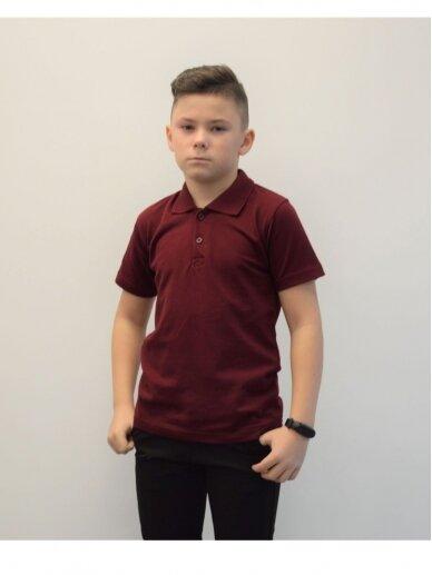 Bordo polo marškinėliai 2