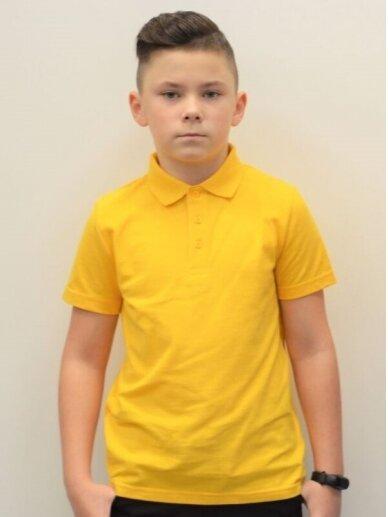 Geltoni polo marškinėliai 2